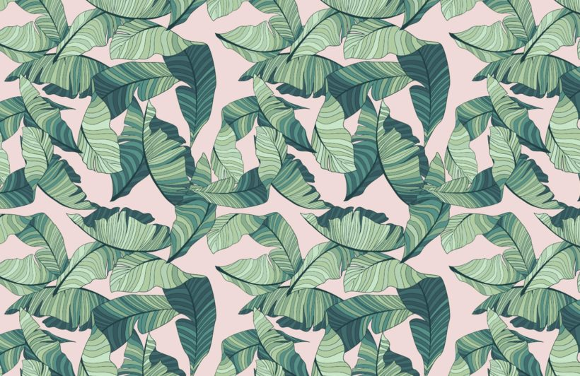 pink-and-green-tropical-leaf-design-plain-820x532
