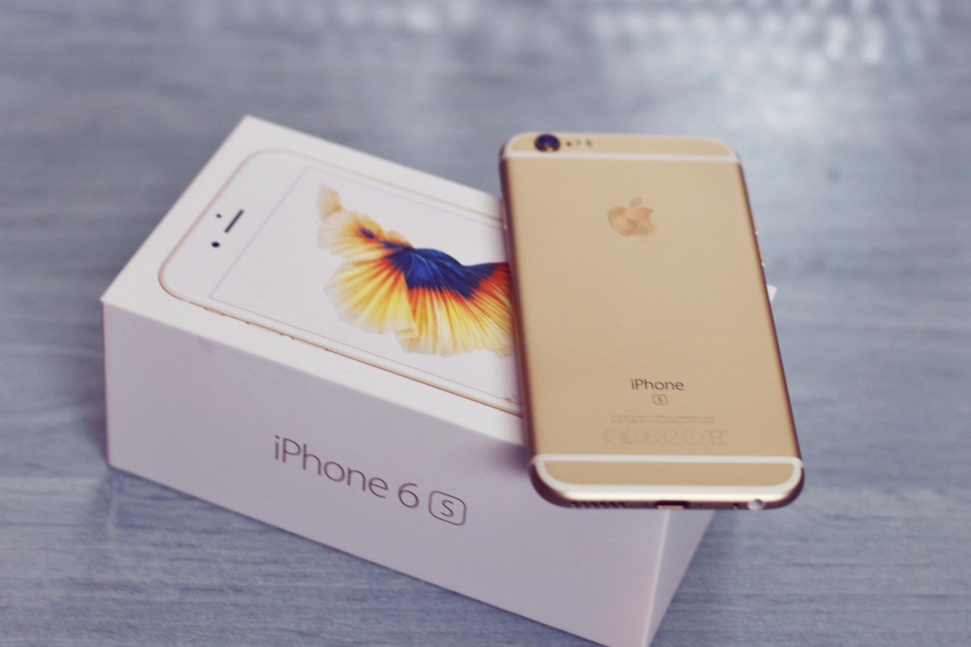 gold iphone 6s my new iphone 6s gold kitten manchester fashion 2105